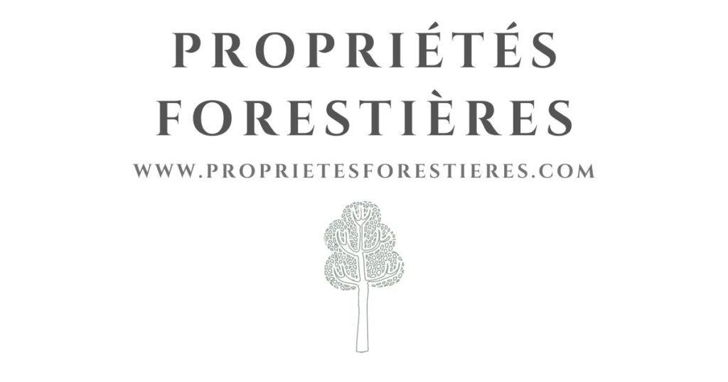 Je vends une forêt avec PropriétésForestières.com
