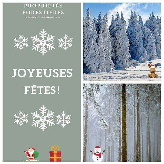 Joyeuses fêtes avec PropriétésForestières.com