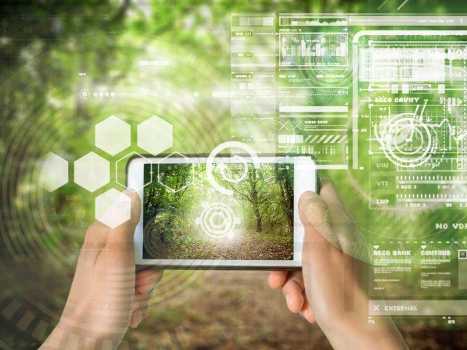 Le numérique au service du marché des forêts