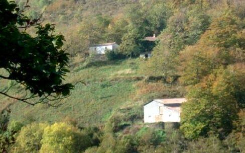 Forêt à vendre Pyrénées-Orientales