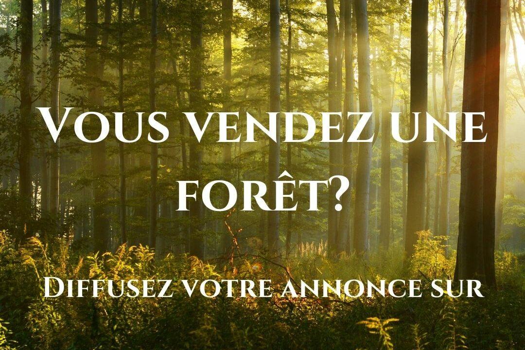 Je vends une forêt
