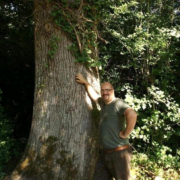Forêt à vendre Périgord 2